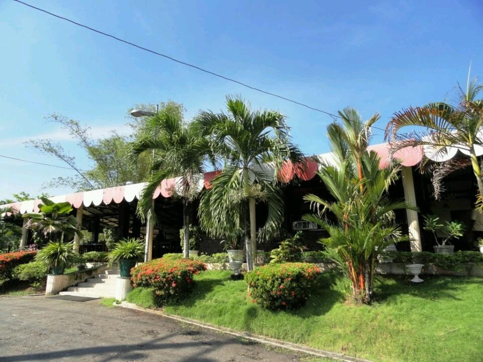 palmgarden1