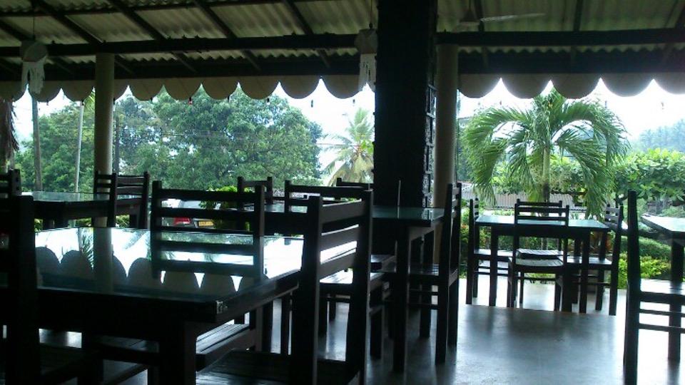 palmgarden2